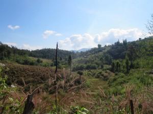 Landschaft im Norden Thailands