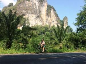Mit dem Fahrrad den Khao Sok Nationalpark erkunden