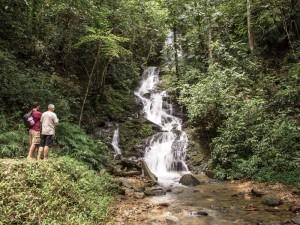 Den Khao Sok Nationalpark erkunden