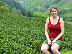 In der Mekongregion finden Sie viele Teeplantagen