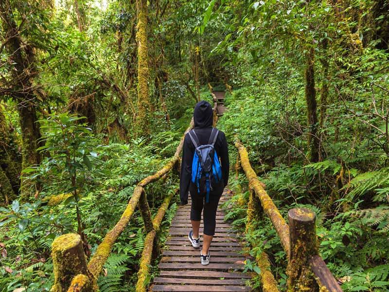 Chiang Mai Ausflug: Über schmale Pfade zur Spitze