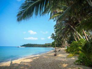 Thailand Rundreise und Badeurlaub - Palmen, Meer und Strand auf Koh Kood