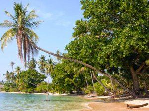Traumhafter Palmenstrand auf Koh Mak