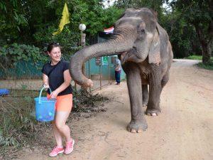 Reisespezialistin Franziska bei der Elefantenfütterung in der WFFT