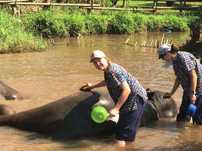 Bei einem Bad im Fluss können Sie die Elefanten schrubben