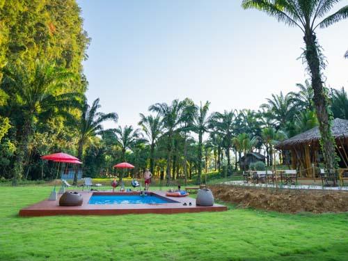 Pool der Dschungel-Unterkunft