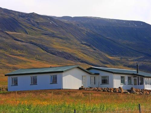 Farm in Südisland