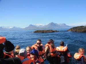 Bootstour zu den Papageientauchern in Island