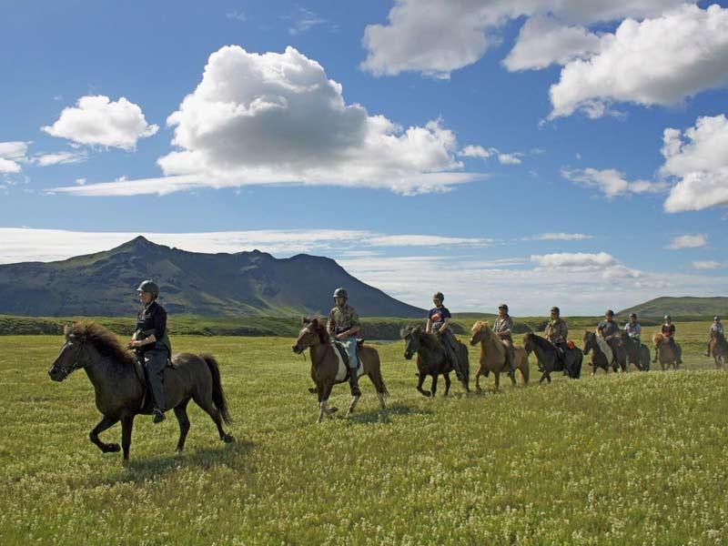 Reittour auf einem Islandpferd