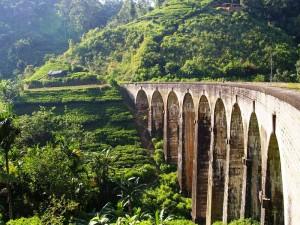 Eine Zugbrücken mitten in Teefeldern in der Umgebung von Ella