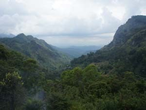Rundreise Sri Lanka: Panoramalandschaft in Ella