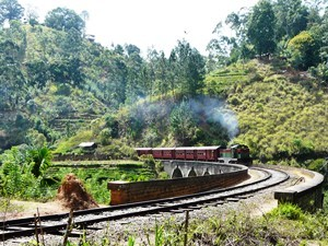 Mit dem Zug durch die Teefelder