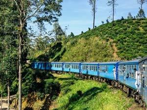 Ein blauer Zug fährt durch die eindrucksvollen Teefelder Sri Lankas