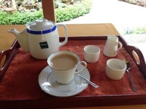 Tee ist in Sri Lanka ein typisches Getränk