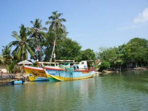 Fischerboote in den Lagunen von Negombo