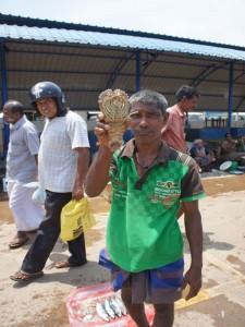 Verkäufer auf dem Fischmarkt von Negombo