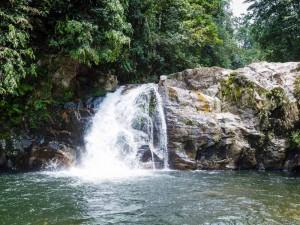 Tosender Wasserfall im Regenwald