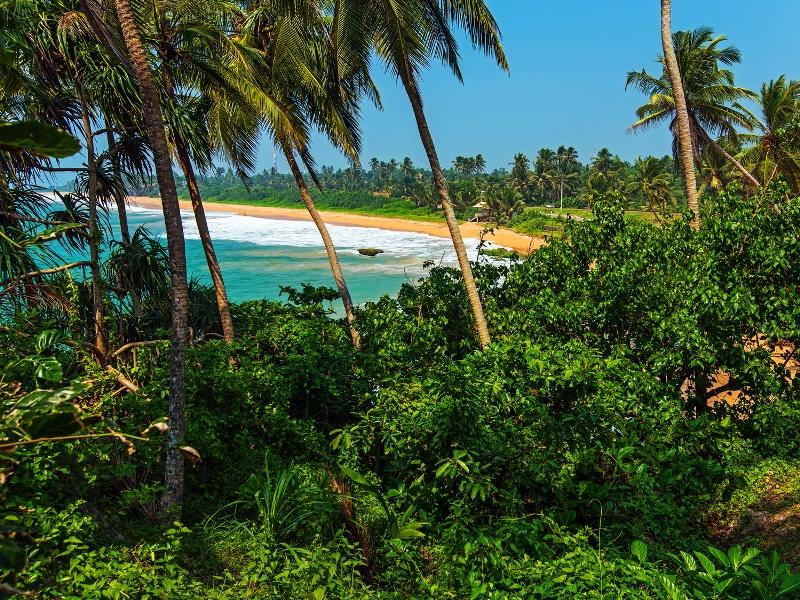 Sri Lanka Strandurlaub