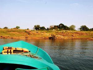 Elefanten vom Boot aus beobachten