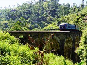 Mit dem Zug durch die Teeplantagen