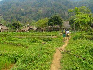 Wanderung im Pu Luong Naturreservat