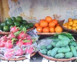 exotisches Obst auf der Streetfood Safari