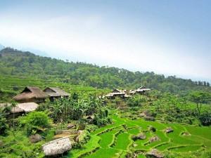 Einblicke in das vietnamesische Landleben bei Pu Luong erhalten