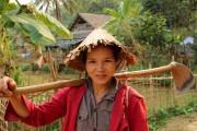 Komfortrundreise: Lagunen, Königsstädte und Sampans
