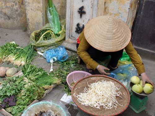 Hanoi Ausflüge: Händlerin