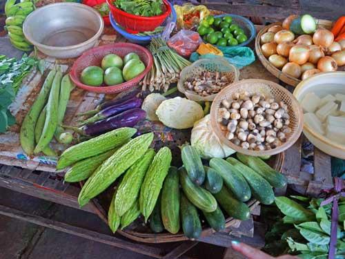Hoi An Ausflüge: frisches Gemüse