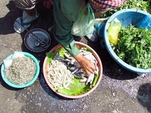 Einheimische beim Fischverkauf auf einem Markt in Phnom Penh