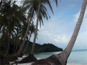 traumhafter Strand in Vietnam