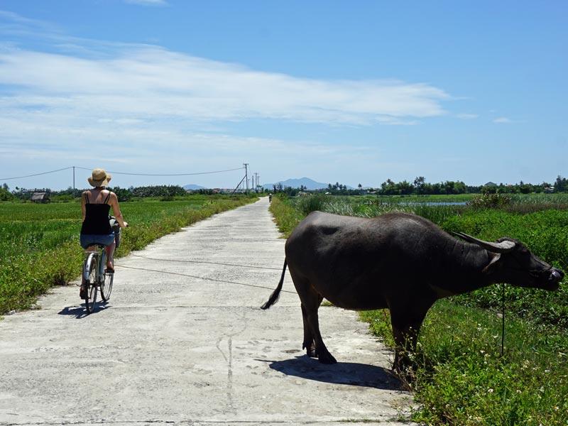 Fahrradtour bei Vietnam Rundreise