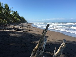 Karibikstrand in Costa Rica