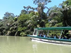 Mit dem Boot durch den Tortuguero Nationalpark
