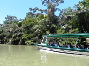 2 Wochen Costa Rica Nationalpark Tortuguero