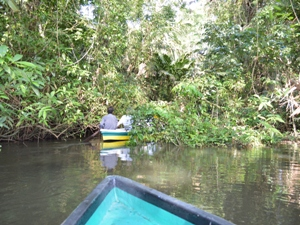 Im Nationalpark Tortuguero