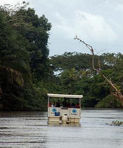 Bootsfahrt auf dem Rio Frio in Caño Negro