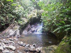 Eine Abkühlung im Wasserfall auf der Seite von Panama