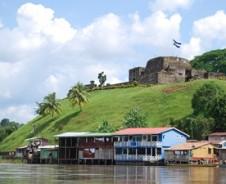Kaimane am Rio San Juan