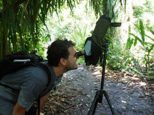 Wanderung durch den Nationalpark Carara