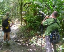 Auf geht's in den Corcovado Nationalpark