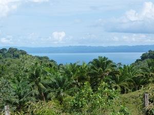 Ausblick aufs Meer beim Corcovado Nationalpark