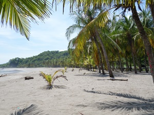 Kajaken & entspannen an der Playa Sámara