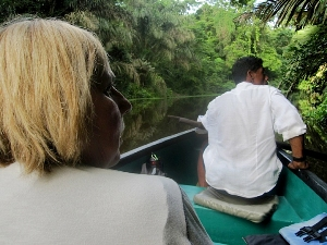 Bootstour durch den Regenwald Tortugueros