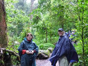 Wanderung bei Regen im Monteverde Nationalpark