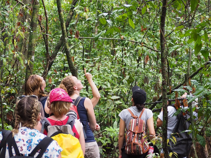 Costa Rica Gruppenreisen Natur Nationalpark
