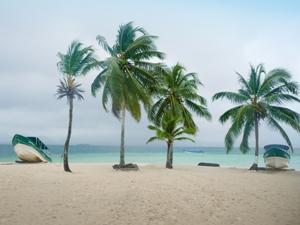 Strand und Palmen auf den San Blas Inseln