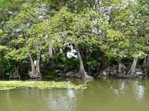 Isletas im Nicaraguasee