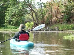Kajaktour durch Mangroven in Sámara